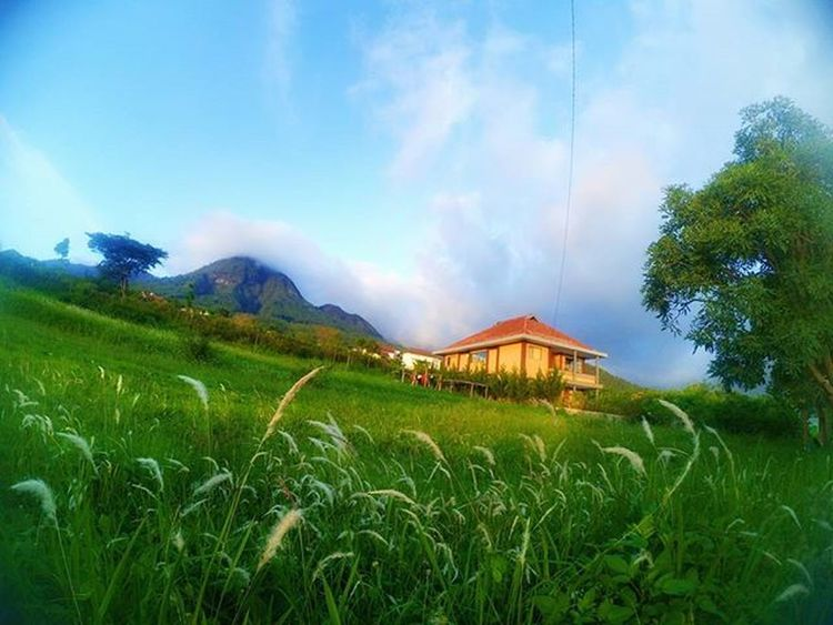 Mata itu tipuan ... Karena hati lebih mempunyai rasa ... Landscapephotography Landscape Xiaomiyi_id Xiaomi Yicammalang Yicamera Sky Together Smkn1gedangan Lensakeindahan Natgeo Teacher Happy HDR Captureitall INDONESIA Batumalang Actioncam Plaurista Villapanderman Villa