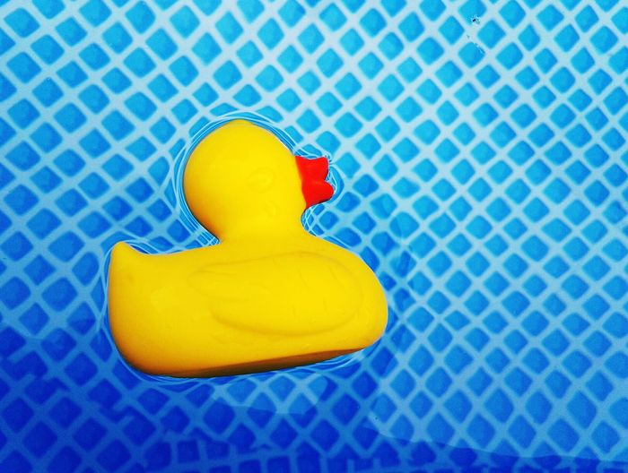 Close-up of yellow rubber duck floating in pool