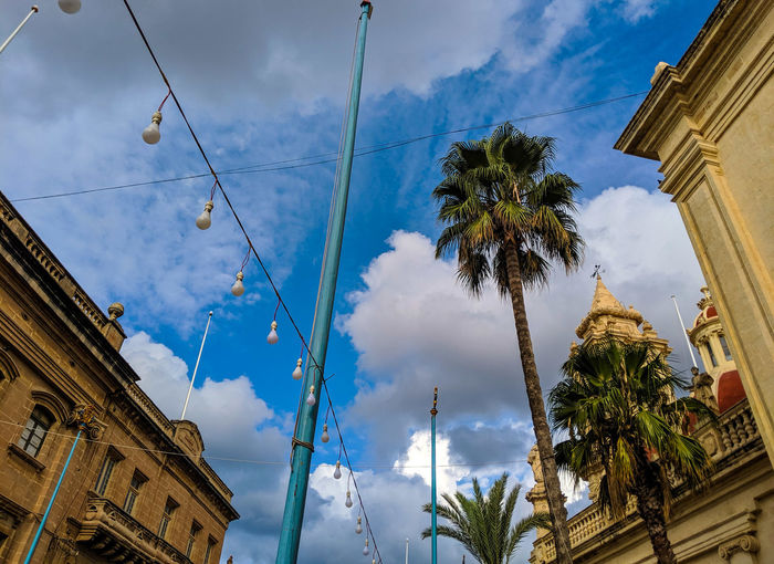 Low angle view of palm trees and buildings against sky