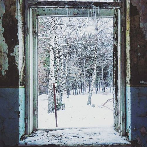 Winter Wonderland Snow Winter Photography Beautiful Nature Photography Simple Photography Escapereality Scenery Snow Covered Forest Trees Naturelovers Window Window View Old Buildings Ice