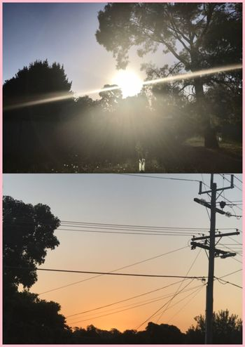 The thing's I see while going for a walk ☀️🍃📸 Sunset Trees Powerlines Cables Wires In The Sky No People Beautifulnight MyPhotography Orangesky Sunshine ☀ Collage Landpost