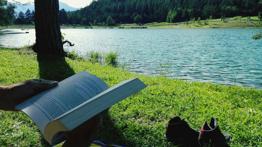 Relax Book Libro Open Agassi Hello World Enjoying Life Colour Of Life Green Verde Tree Albero Lake Lago Water_collection Sun Reflection Riflessi Sole Riposo