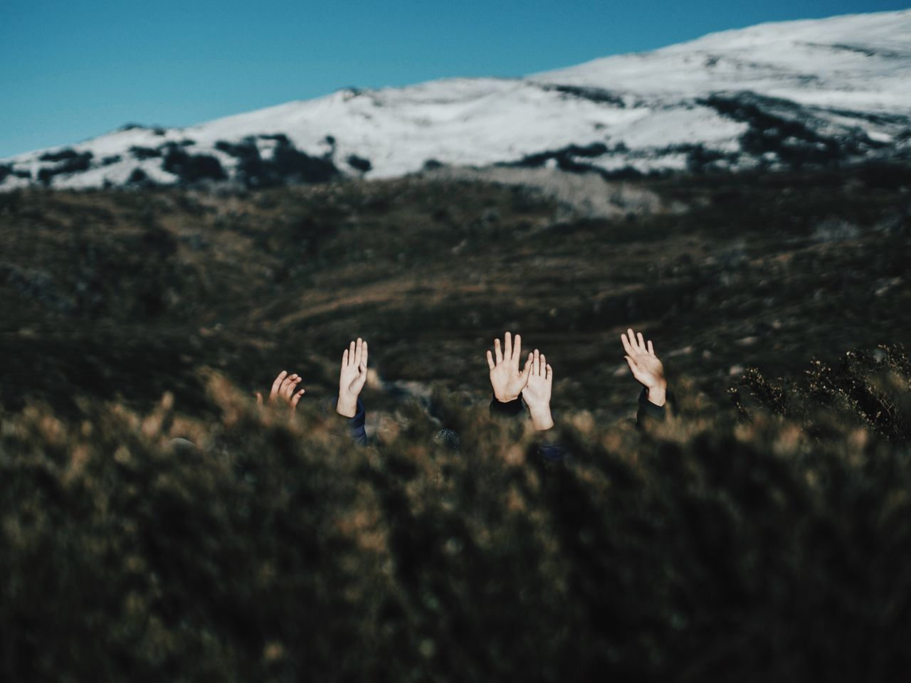 Hands Coming Out From Field Against Snowcapped Mountains