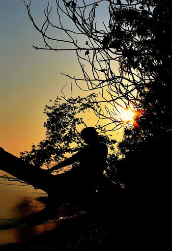 Silhouette One Person Tree Sunset Outdoors Eye4photography  EyeEm Selects EyeEm Gallery Landscape Photography Pulau Pari Indonesia The Week On EyeEm First Eyeem Photo