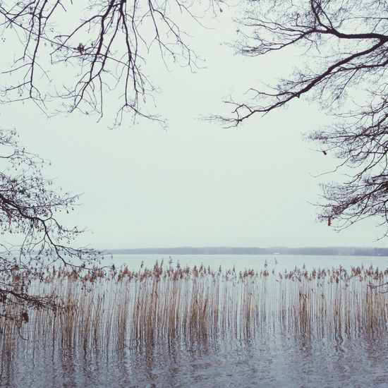 Walking Around Jogging Sweden