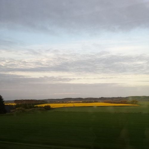 Smuk mandag morgen. Beautifulcolors Cloudporn Dirtonthetrainwindow Udsigtfratoget pendlerliv mxpendlerliv