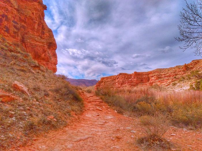 Awash With Color ! Wilderness Area Paths Mountain Range Desert Photography Desert Landscape Desert Plants Cloudy Sky Nature Popular Photos EyeEm Gallery Light And Shadow Muti Colored Sandstone Rock Formation EyeEm Selects Mountain Rural Scene Desert Arid Climate Sunset Sky Landscape