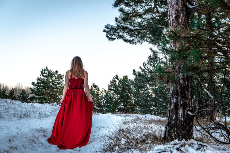 Morning Light Green White Background Pinetrees Tree Forest Copy Space Natural Snowy Cold Temperature Winter Snow Girl Woman In Red Red Dress Red Outdoors Nature Women One Person Rear View Hair Beauty In Nature Long Hair