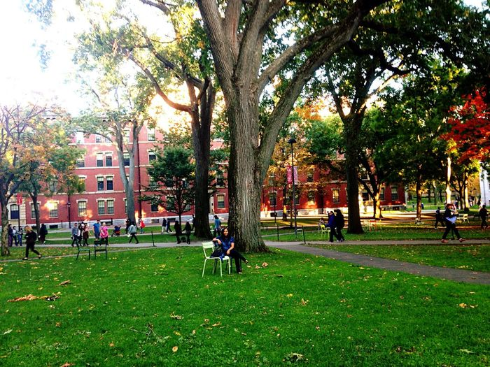 Harvardsquare