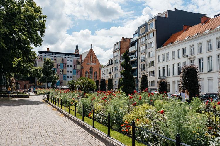 Flowering Plants By Footpath At Town Square