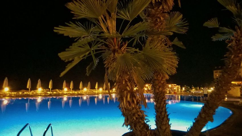 Sommergefühle 😉😊😊✋ Water Swimming Pool Night Palm Tree Tree Outdoors No People Illuminated Sky Low Angle View HelloEyeEm Eyem Select EyeEmNewHere Travel Destinations Outdoor Photography Nature Close-up Day Scenics Live For The Story Adults Only Tranquil Scene Beauty In Nature