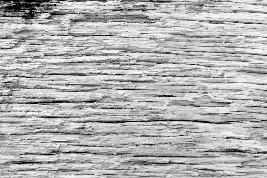 Wood Abstract Abstract Backgrounds Backgrounds Black And White Blackandwhite Close-up Macro Natural Pattern Old Pattern Rough Textured  Textured Effect Wood Wood - Material Wood Grain