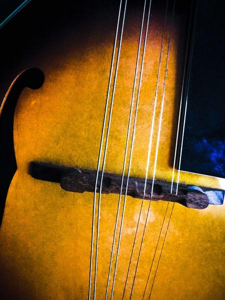 Mandolin Music Is My Life Northampton Uk Strings Instruments
