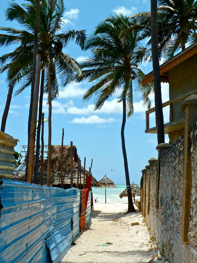 Tanzania Memories.... Africa Architecture Beach Bright Future Built Structure Exotic Freedom Future Happieness Island Life No People Palm Tree Sky Sunny Tanzania The Way Forward Tranquility Travel Bug Travel Destinations Travel Photography Travelling Vacation Time Walkway Wanderlust Zanzibar