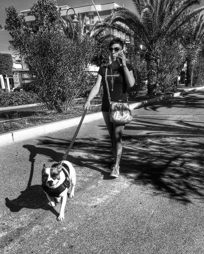 Dog & girl Shootermag AMPt_community NEMstreet Open Edit Street Photography Streetphotography Taking Photos People Blackandwhite Black & White