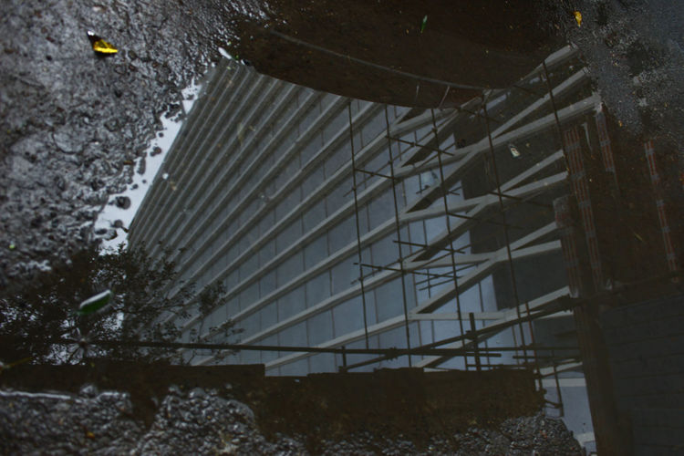 Architecture Building Building Exterior Built Structure Day Dirt High Angle View Metal Nature No People Outdoors Plant Puddle Reflection Roof Tree Water Window