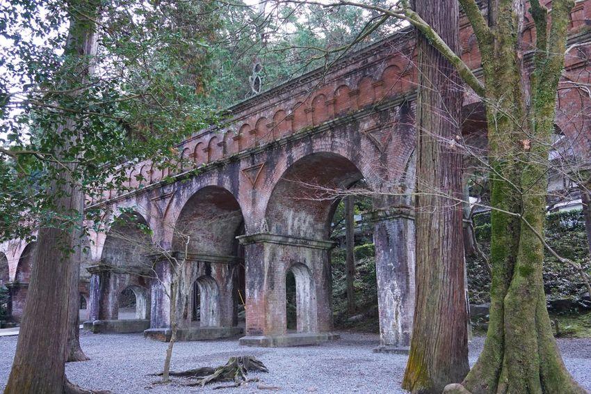 2016 Aqueduct Arch Architecture Brick Bridge Built Structure Japan Kyoto Nanzenji Temple Tree 京都 南禅寺 水路閣
