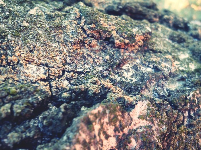 Textures And Surfaces