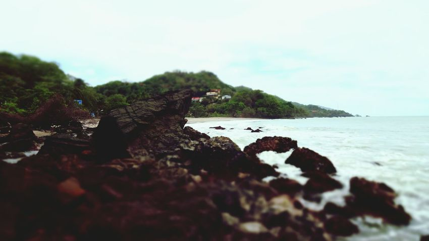 Sea Beach Nature Rock - Object No People Water Tranquil Scene Scenics Beauty In Nature Sky Tranquility Outdoors Sand Landscape Day Wave Animal Themes Trinidad And Tobago Trinidad Artsy Photography Focus On Macro Beauty