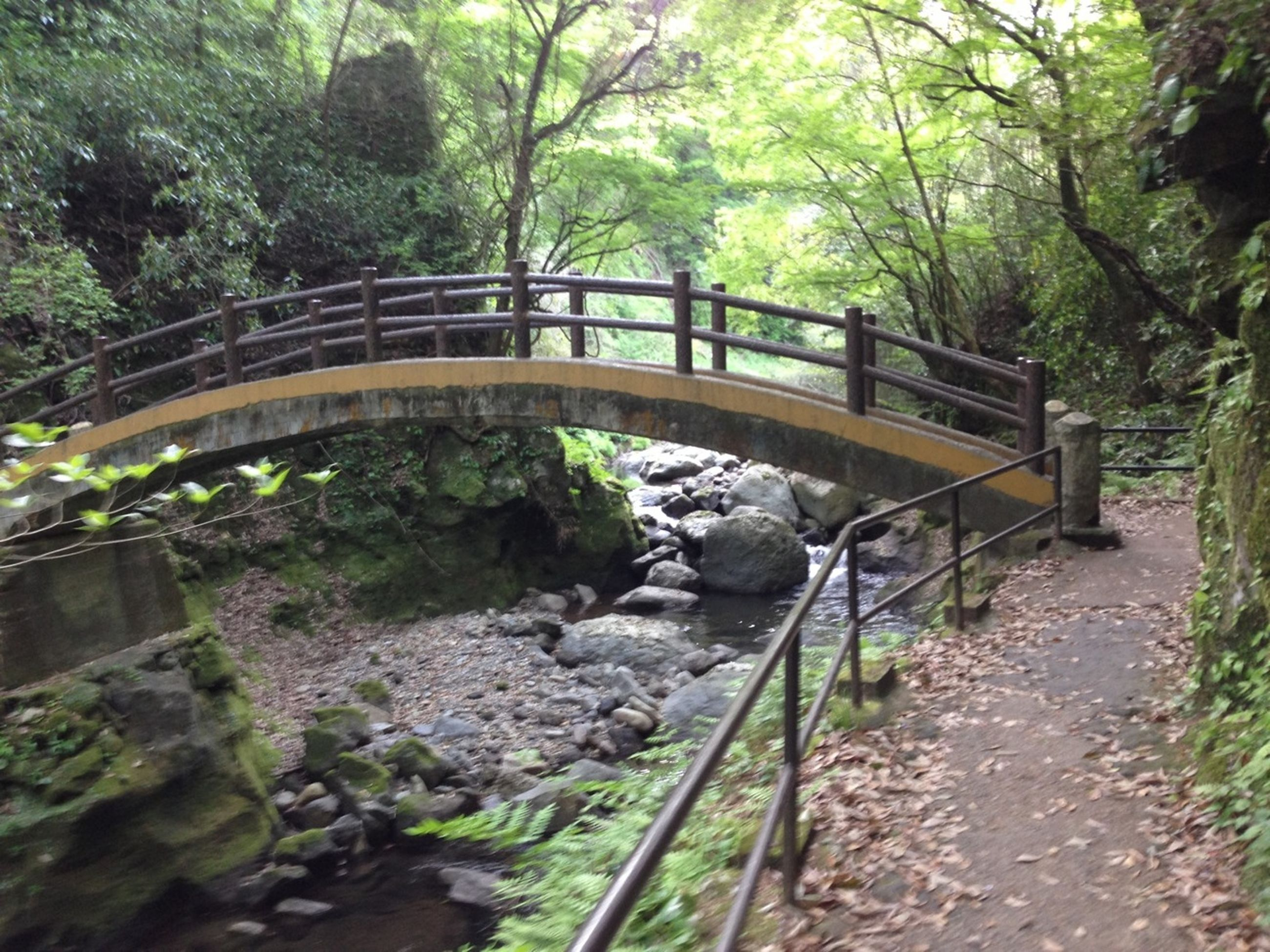 connection, bridge - man made structure, tree, water, river, bridge, footbridge, forest, built structure, railing, architecture, arch bridge, transportation, rock - object, tranquility, nature, stream, engineering, day, growth