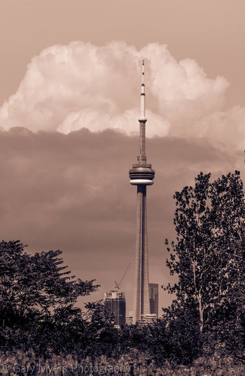 Architecture Built Structure Cloud Cloud - Sky CN Tower Communications Tower Culture Day Development Famous Place Growth International Landmark Low Angle View Modern Outdoors Sky Skyscraper Spire  Tall Tall - High Tourism Tower Travel Destinations Tree Treetop