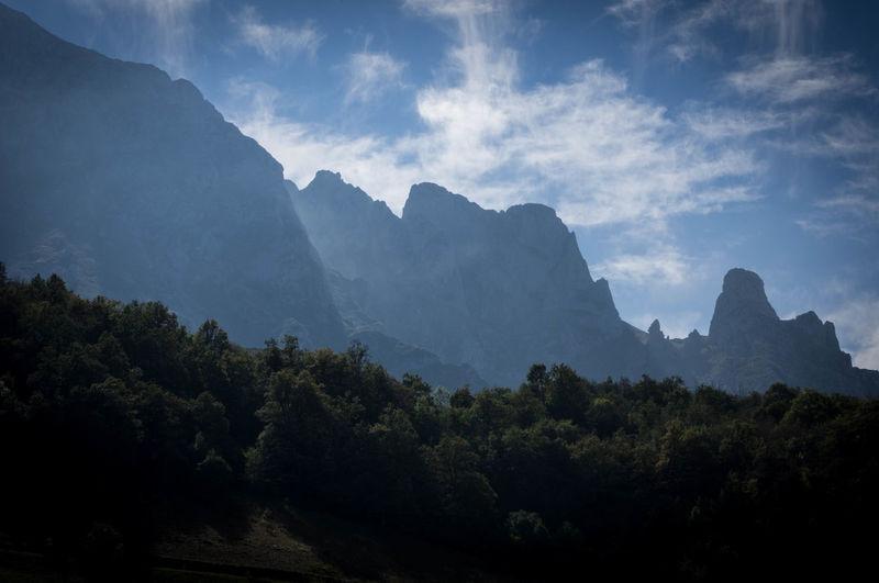 Beauty In Nature Day Mountain Mountain Range Nature No People Outdoors Picos De Europa Tree