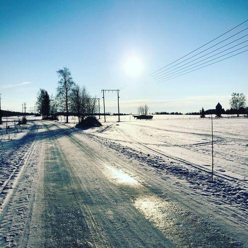 Vinterdag Jamtland