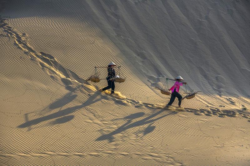High angle view of people on sand dune