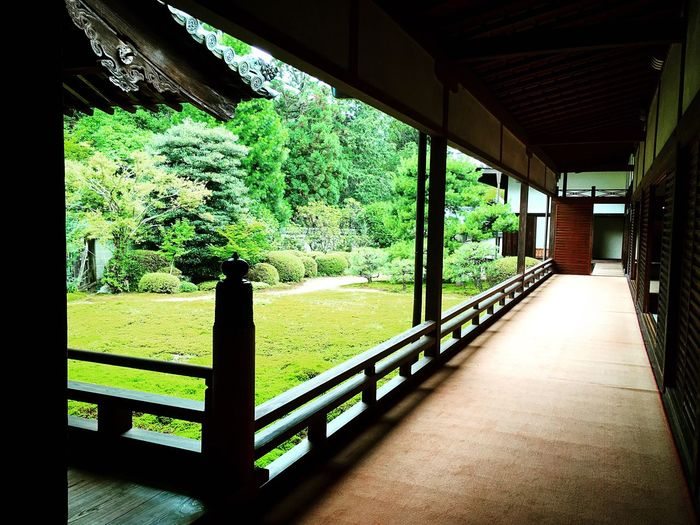 随心院 山科 京都 Kyoto Kyoto, Japan Travel Destinations 3XSPUnity Kyototravel Relaxation Architecture Lifestyles Relaxing Enjoying Life Hello World Kyoto Garden Japanese Garden