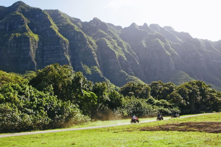 Kualoa ranch, where major movies were filmed Beauty In Nature Day Golf Golf Course Golfer Grass Green - Golf Course Green Color Growth Landscape Leisure Activity Lifestyles Men Mountain Mountain Range Nature Outdoors Real People Scenics Sky Togetherness Tranquil Scene Tranquility Tree Two People