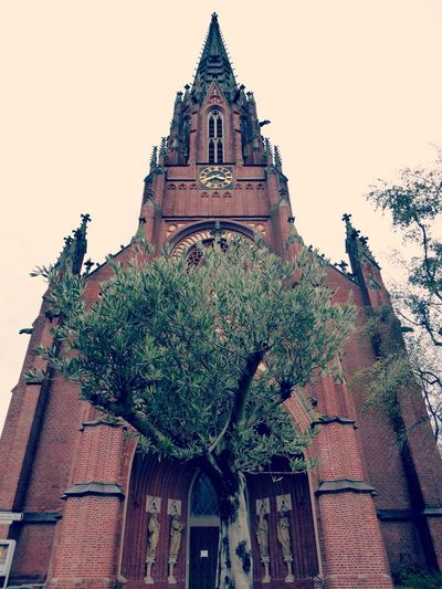 All A Question Of The Perspektivefrogs view🙄 Beauty On A Cloudy Day Down On My Knees📷 Love Unusual Perspectives Beautiful Church Olive Tree Lucky Me🦄 Love My Hometown😍 City Impressions Untamed Heart For My Friends 😍😘🎁 You Raise Me Up✨ My Soul's Language Is📷 Focus On The Good Things Tranquility Looking Up😍 Enjoying The View Simple Beauty