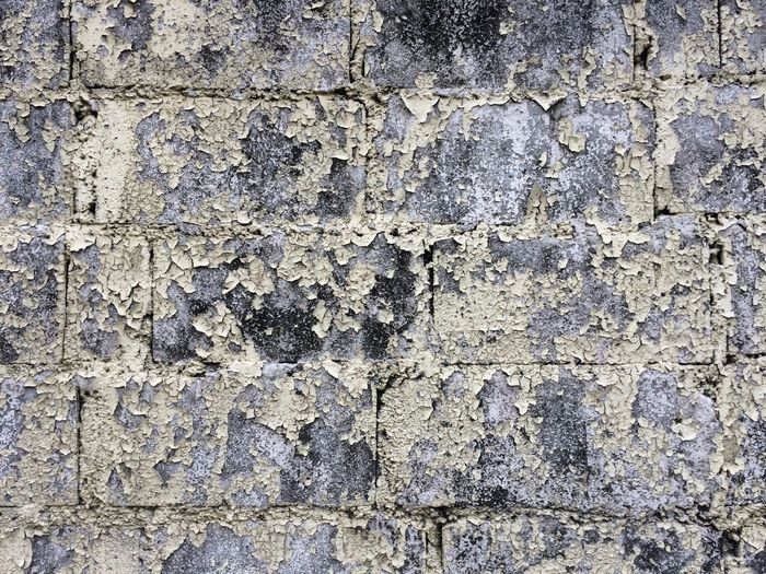 Textured  Backgrounds Full Frame Rough Pattern No People Built Structure Close-up Weathered Wall - Building Feature Old Day Wall Outdoors Architecture Tree Trunk Trunk Nature Tree Damaged Stone Wall Ruined