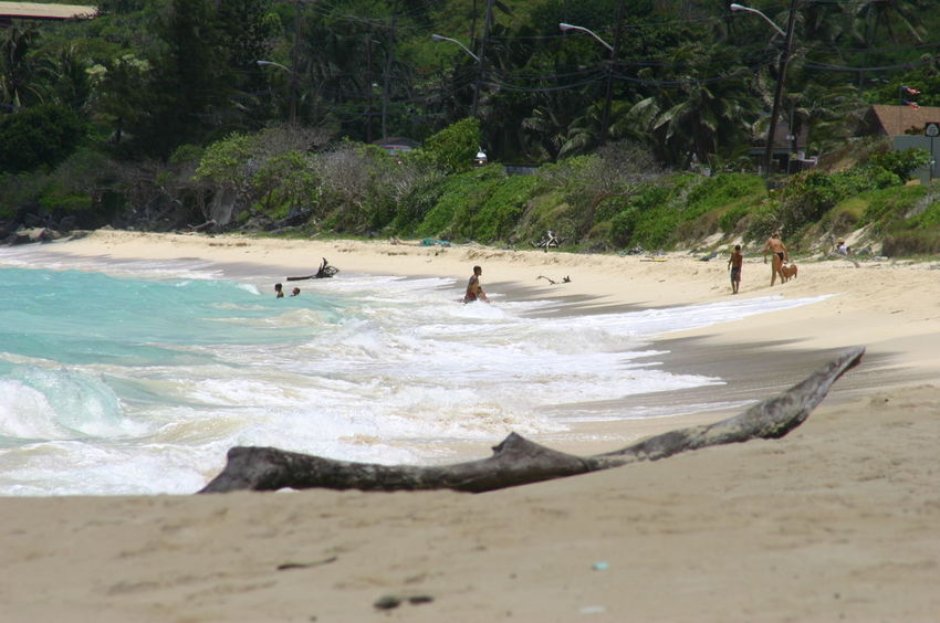 Beach Life Beach Photography Hawaii Tropical Paradise Waimanalo Beach Beach Blue Sky Blue Waves Clouds Clouds And Sky Day Hawaiian Hawaiishots Nature Ocean Outdoors Sea Tourism Destination Tropical Water Waves