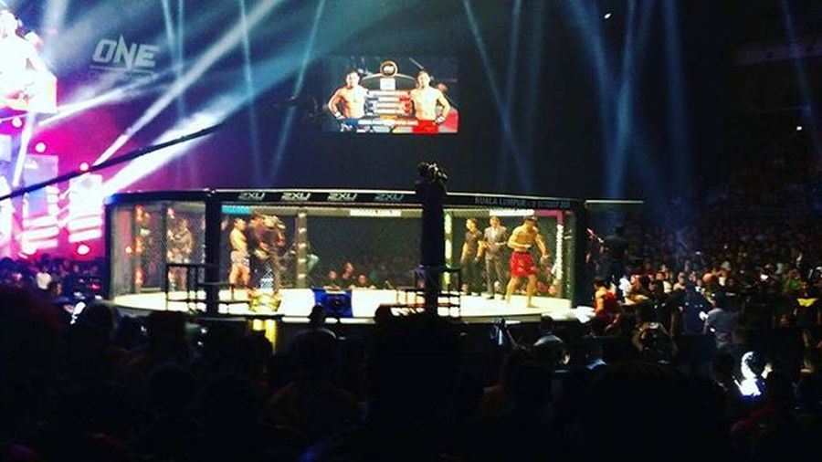 My view last night. Much muskles. BLOODY too! MIMMA3