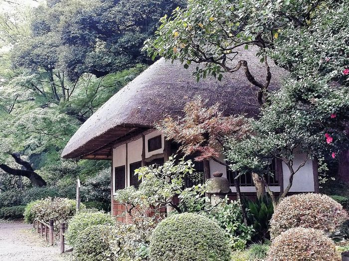 Rest Area Japanese  Building Design Architecture Architecture_collection Architecturelovers Koishikawa Korakuen 1629 Tokugawa Edo Period Clan Garden Tokyo Autumn 2015 Tokyo Japan Travelphotography