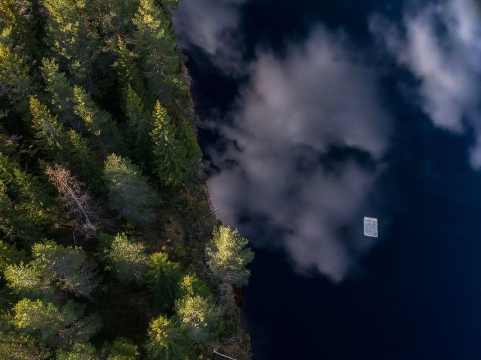 Pontoon in the lake. Summer Trees And Nature Trees And Sky Trees Lake Lake Life Hiking Sweden Scandinavia Drone  Outdoor Life Nature Plant No People Tree Nature Cloud - Sky Built Structure Growth Sky Outdoors Water Land Scenics - Nature