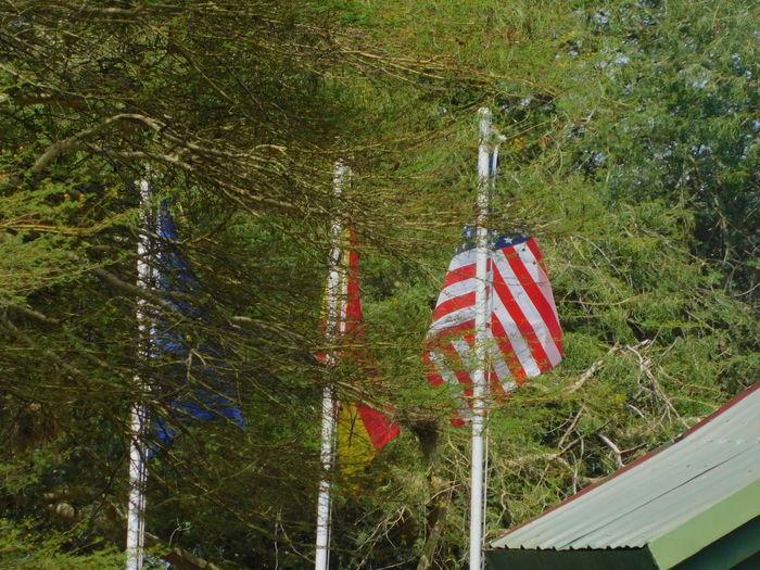Flags Eu Flag