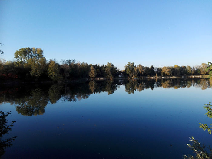 Am See See Wasserspiegelung Water Lake Sea Teich Steiermark Austria Herbst Herbststimmung Wald Waldspaziergang Spaziergang Walking Outdoors Blue Sea And Sky Nature Reflection Beauty In Nature Reflection Lake Tree Blue Sky And Clouds Best EyeEm Shot EyeEm Best Shots EyeEm Nature Lover