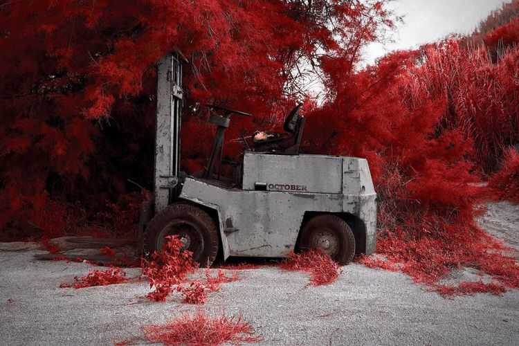 Outdoors Mode Of Transport No People Transportation Land Vehicle Leaf Tree Nature Red Infrared Infrared Photography Aerochrome