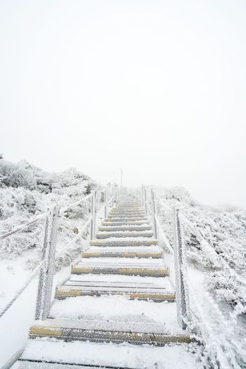 ASIA Frozen Halla Mountain Jeju Korea Landscape_Collection National Park Tree Winter Background Cold Fog Frozen Nature Hiker Hiking Trail Hobby Jejuisland Landscape Landscape_photography Mountain Climbing Scenery Snow Snowcapped Mountain Volcano Way