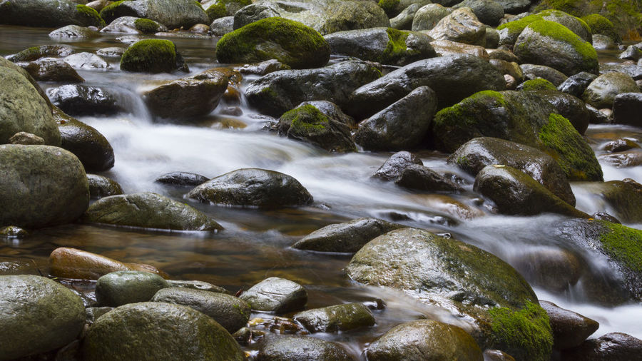 Beauty In Nature Blurred Motion Day Flowing Flowing Water Forest Italy Land Long Exposure Motion Mountain Nature No People Outdoors Pebble River Rock Rock - Object Scenics - Nature Shallow Solid Stone Stream - Flowing Water Water Wood - Material
