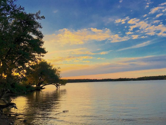Sunset Lake Lake View Lakeshore Water Tree Beauty In Nature Tranquility Waterfront Sky Calm Nature Cloud - Sky No People Outdoors