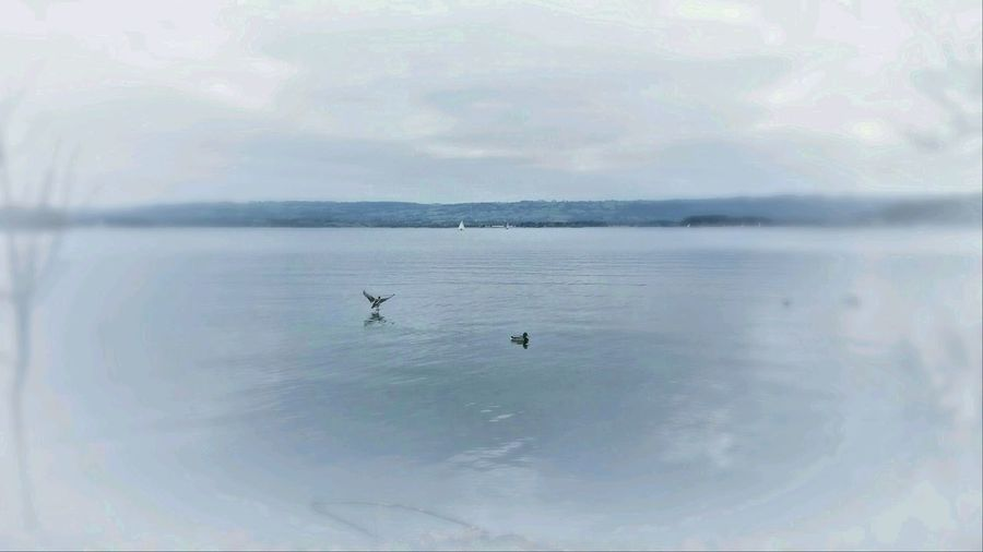 Nature On Your Doorstep Chew Valley Lakes Yeah Springtime Filtering Edit Relaxing Taking Photos