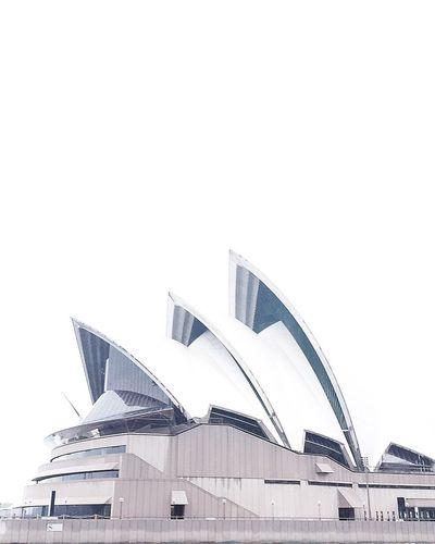 Hidden sails Sydney, Australia Sydney Sydney Opera House Overcast Australia Architecture Iconic Landmark Architecture_collection Sydneylocal Wanderlust Finditliveit Explore Building Nsw NSW Australia Construction Photography