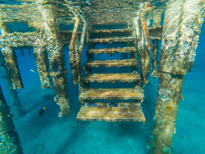 Underwater view of a sea pontoon with coral and algae deposition Pier Pontoon Bridge Snorkeling Steps Algae Aquatic Sport Architecture Blue Built Structure Coral Fish Metal Nature Pontoon Red Sea Rusty Sea Shallow Water Ship Swimming Transparent Water UnderSea Underwater Underwater Pontoon Water