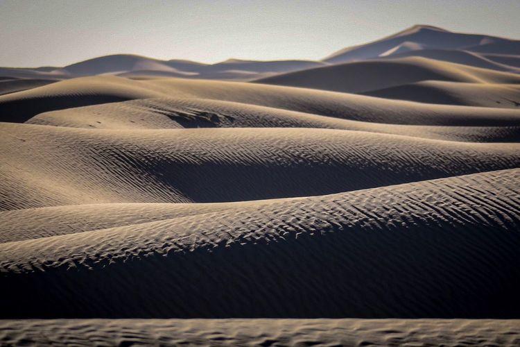Sahara textures.