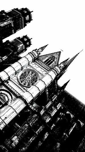 Black And White Black & White Orléans Cathedral Orléans 🔴⚫️🙌 Orléans France Catholic Church Religious Architecture No People Outdoors Bird Nature Day Ink Pixelated
