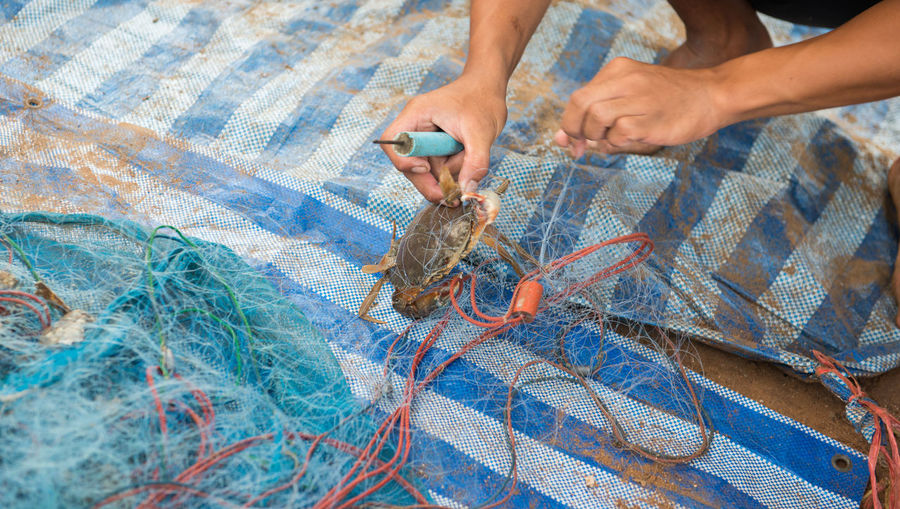 High angle view of fisherman removing crab from fishing net