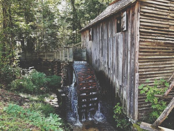 Architecture Built Structure Water Building Exterior Tree House Flowing Water Canal Day Damaged Flowing Stream Outdoors Nature Green Color Rural Scene Weathered No People Stone Material Stone Mill History Weathered Cades Cove Great Smoky Mountains National Park Tenessee