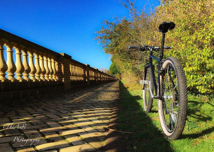 Freshly Build Hardtail Steel Xtr Raceface Syncros Sunn Mavic Avid Drachenhaus Sanssouci Retrobike Vintage Classicbike Be. Ready.